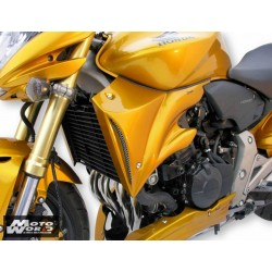 ERMAX Cooling Air Scoops for HONDA CB 600 07-10