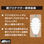 RS-Taichi CORDURA STRETCH PANTS - RSY252
